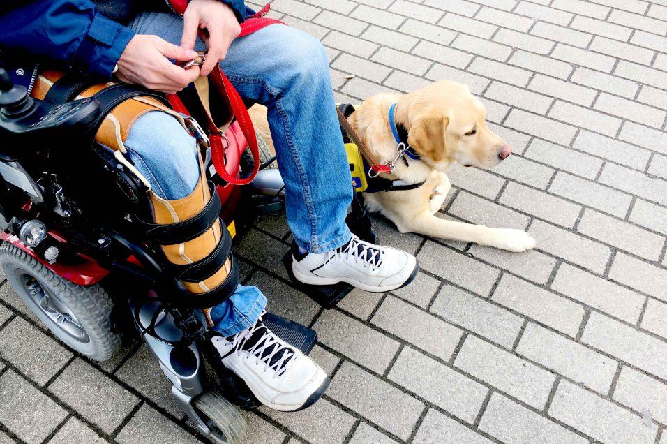 Nielson chien d'aide à la STIB