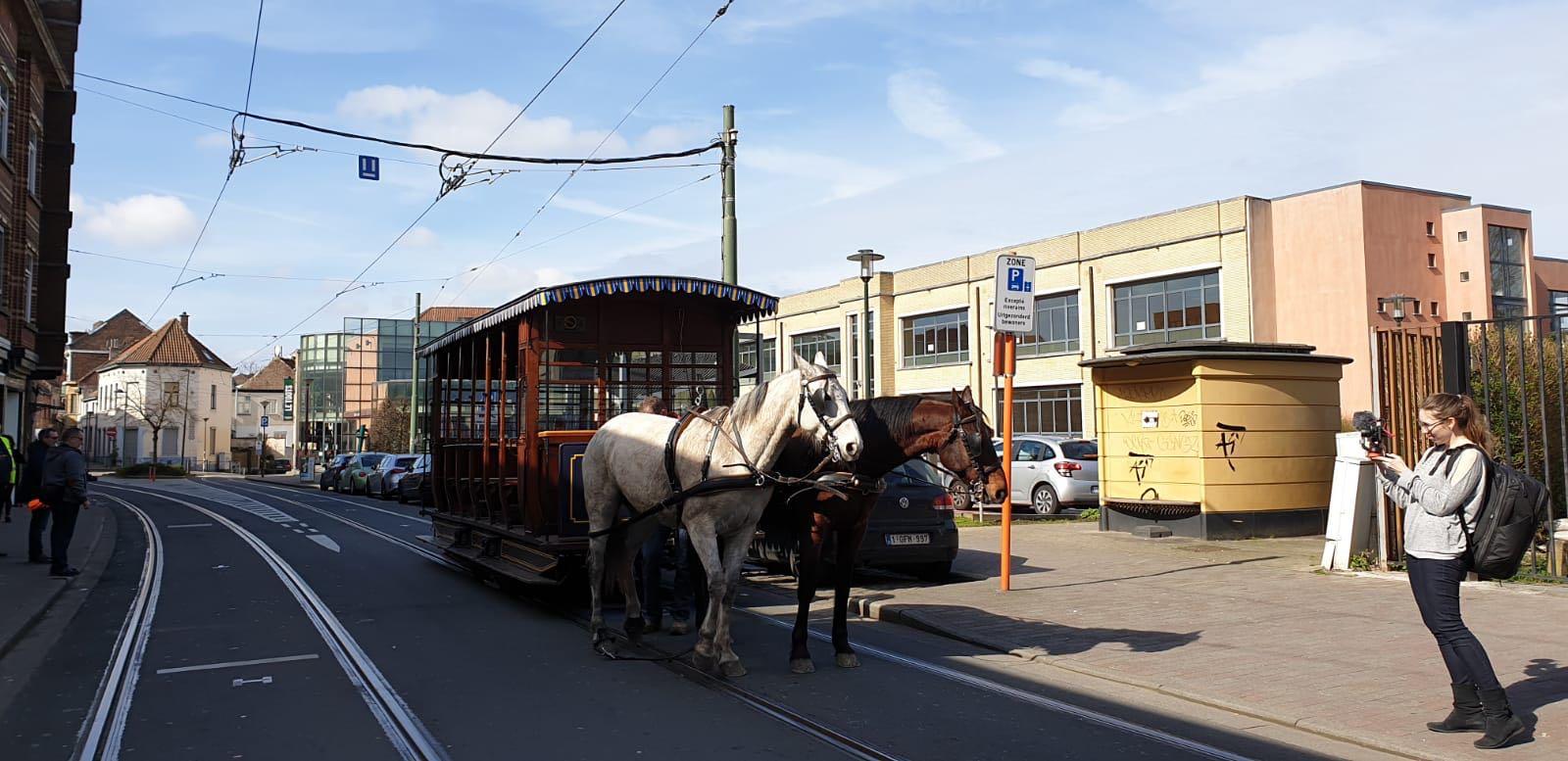 Les chevaux reviennent sur notre réseau !